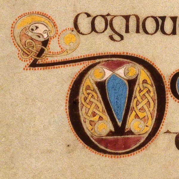 Initiale D présente au folio 245v du Livre de Kells