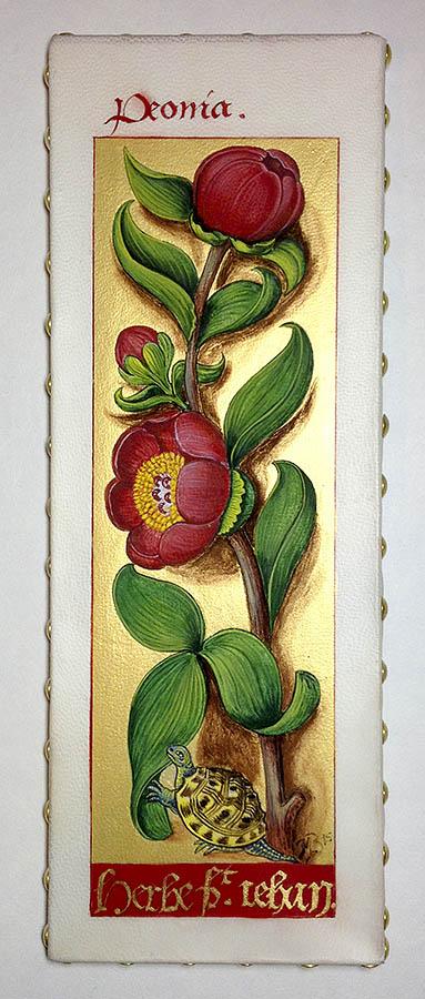 Pivoine. Reproduction d'une enluminure des Grandes heures d'Anne de Bretagne.